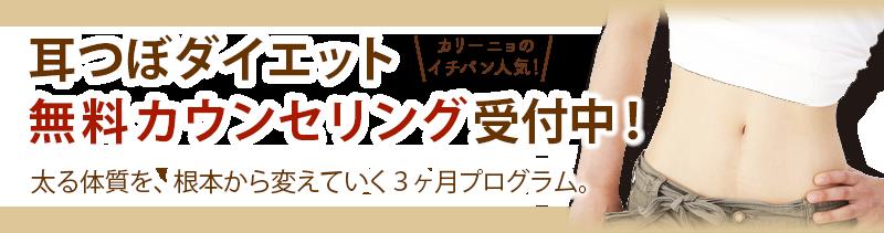 耳つぼダイエット無料カウンセリング受付中!